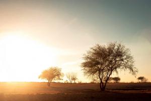 Coahuila Mexico Hunting Ranch sunset